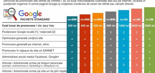 Oferta pachete promovare site in Google